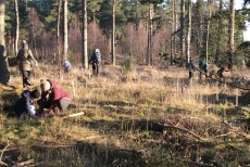 Successful Tree Planting - Aboyne Kids 4 Climate Action